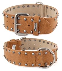 "1.5""Studded dog collar With a studs decoration on each side and i ring in the middle looks gorgeous!."