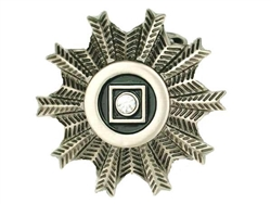Flower, Circle and Square Buckle