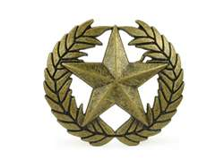 Wheat and Star Brass Buckle